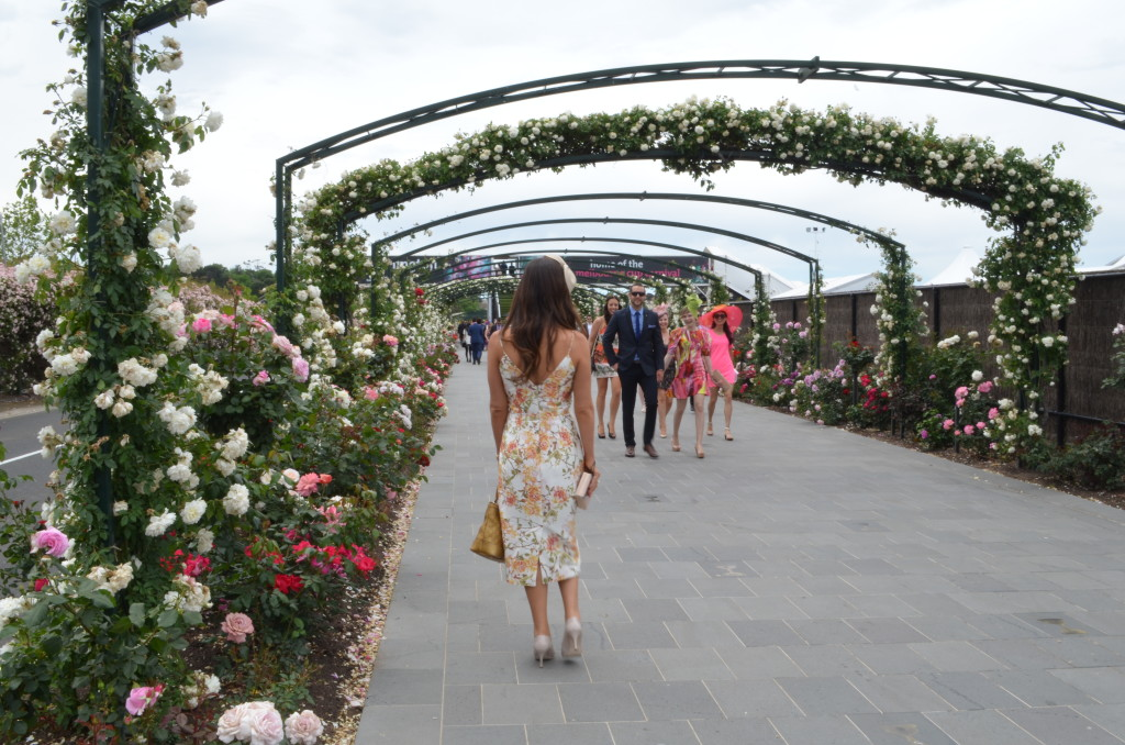 Roses Melbourne Cup